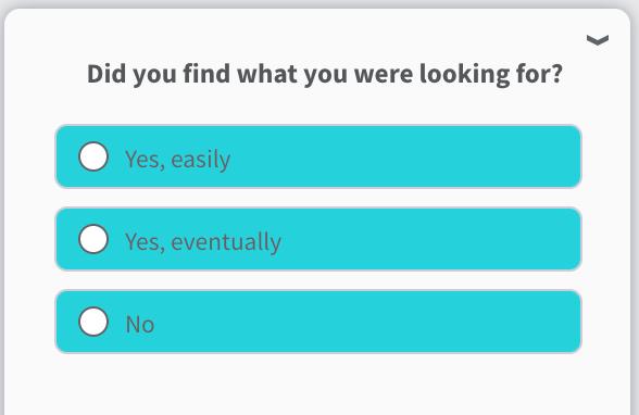 Success-Survey.